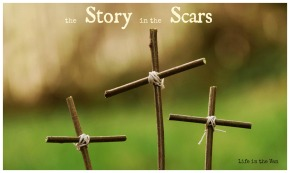 The Story in the Scars