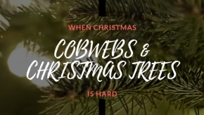 When Christmas is Hard: Cobwebs and Christmas Trees